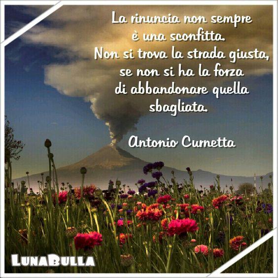 La rinuncia non sempre è una sconfitta.  Non si trova la strada giusta, se non si ha la forza di abbandonare quella sbagliata.    Antonio Curnetta