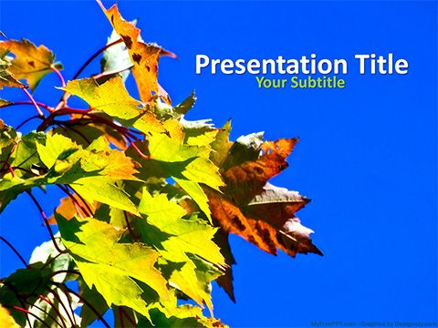 Free Autumn Leaves Powerpoint Template Powerpoint Templates Presentation Template Free Powerpoint