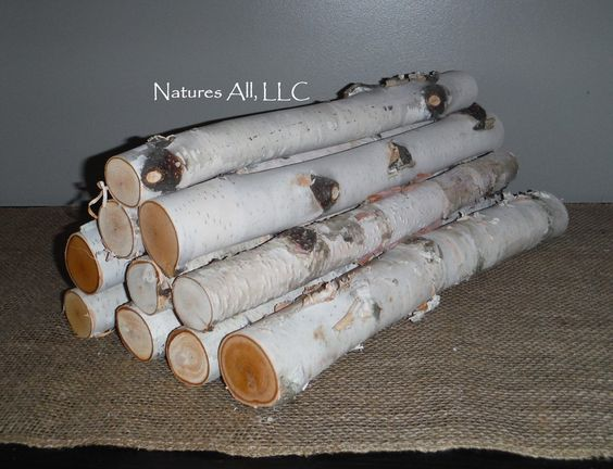 Decorative White Birch Fireplace Logs/10 Piece Set/16 Inch Lengths/2 Inch &…