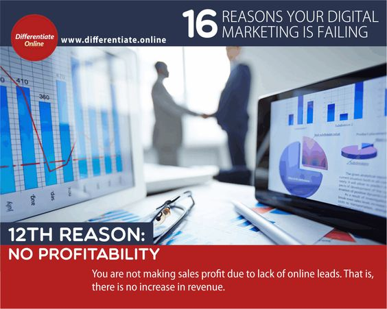 16 Reasons Why Your Digital Marketing is Failing (And What You MUST Do!) - 12). No Profitability