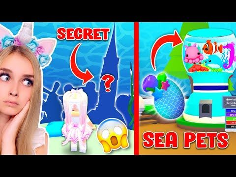 I Found The Top Secret Location Of The New Underwater Pets In Adopt Me Youtube In 2020 Secret Location Roblox Pictures Pets