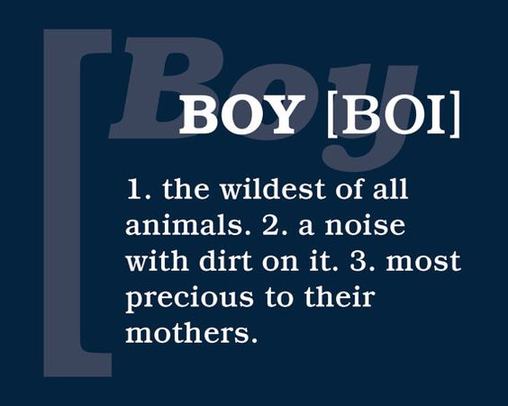 Definition of a boy...couldn't be more accurate