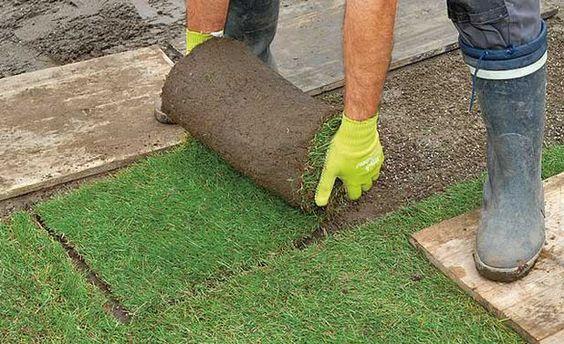 Fertigrasen verlegen - Wie ein grüner Teppichboden für den Garten: Fertigrasen ist schnell und leicht verlegt. Trotzdem muss man dabei ein paar Dinge beachten. Wir erklären dir es.