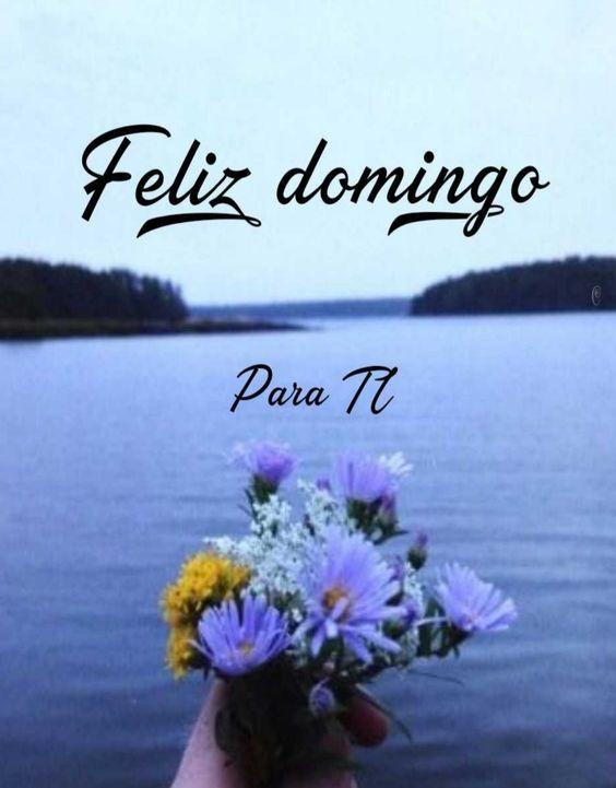 Feliz Domingo ▷ Frases y Mensajes para Saludar 【2019】