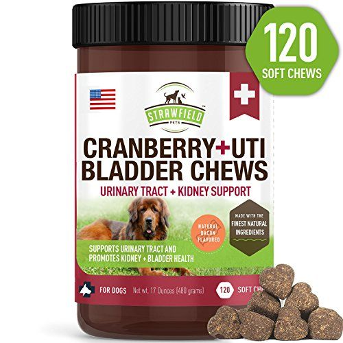 Cranberry Supplement Dog Treats 120 Gluten Free Soft Chews For Dogs Urinary Tract Health Uti Bladder Infection Kidney Support Ut Incontinence Immune Sys Cranberry Supplements Dog Treats Grain Free Urinary Tract