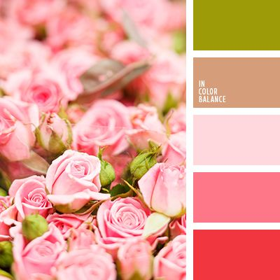 Color pallets colors and pink roses on pinterest - Pink match with what color ...
