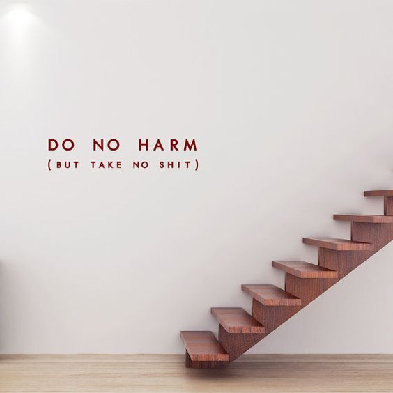 Do No Harm (But Take No Shit) Decal, Decal Quote, Buddhist Decor, Wall Quotes…: