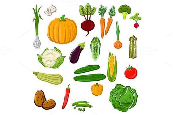 Ripe vegetables by seamartini on @creativemarket