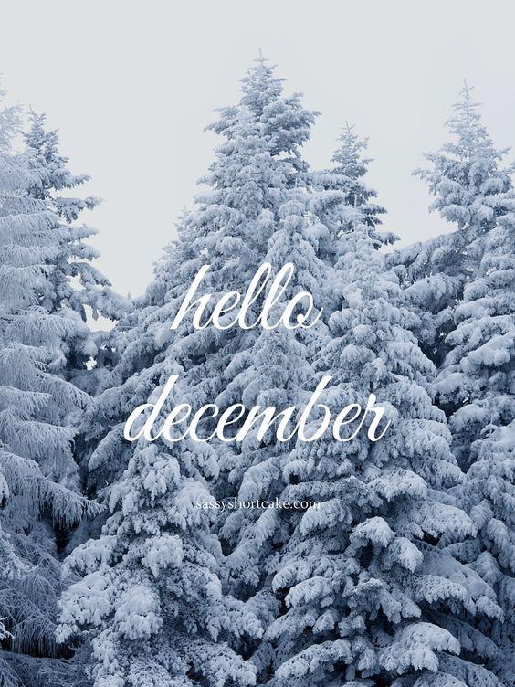 hello december | sassy shortcake: