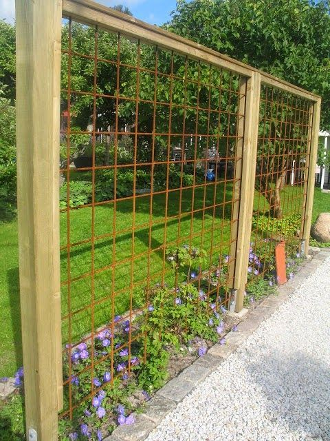 Trellis Of Rebar Garten Gartengestaltung Ideen Garten Ideen