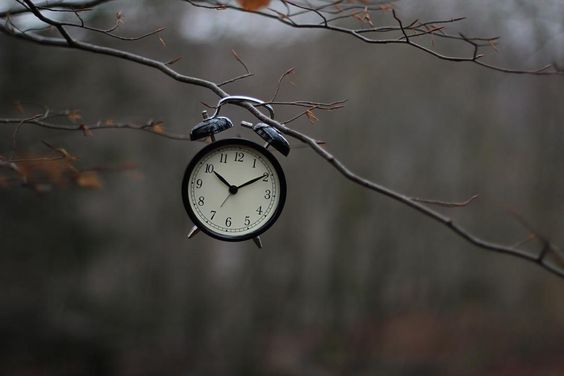 How did it get so late so soon?  It's night  before it's afternoon.  December is here  before it's June.  My goodness  how the time has flewn.  How did it get so late  so soon?  Dr. Seuss by oyeblikk