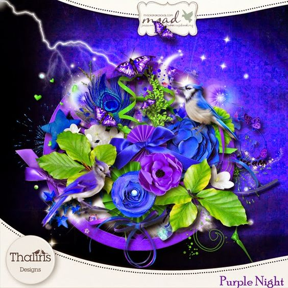 Scrapcoco & Co: Purple night