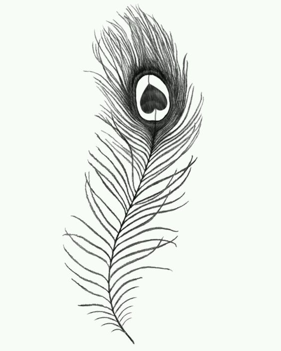 peacock feather tattoo small one tattoos pinterest desenho de tatuagem de pena tatuagem. Black Bedroom Furniture Sets. Home Design Ideas