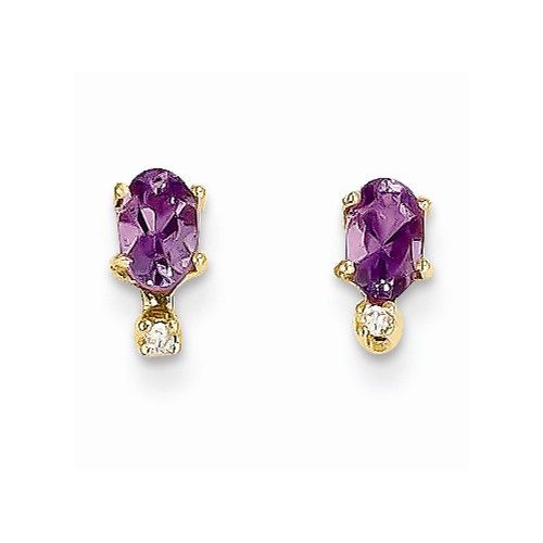 14k Yellow Gold Amethyst Birthstone Post Earrings jewelryshopping.com