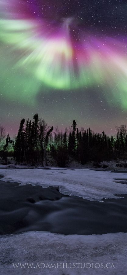 I didn't even notice the phoenix emerging from the northern lights until a few days after the photo had been posted.