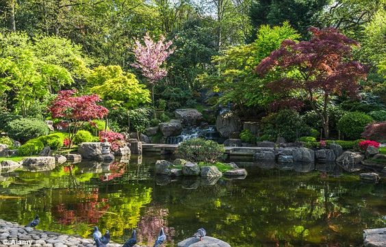 We all know London is full of hidden gems. One definitely a visit is the tranquil and beautiful Kyote arden in Holland park. www.sweatershopuk.com