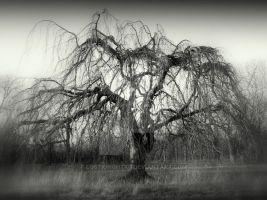 Dread tree by lostknightkg