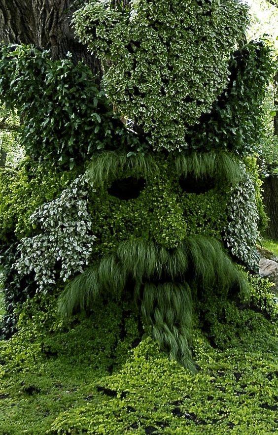 Gandalf tree in the Montreal Botanical Gardens. Zippertravel.com