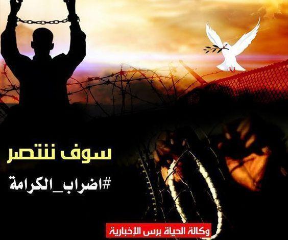 نادي الأسير ستة أسرى يواصلون الإضراب عن الطعام بينهم الأسيرة اللبدي Movie Posters Movies Poster
