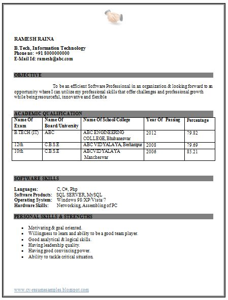 resume format for msc computer science freshers