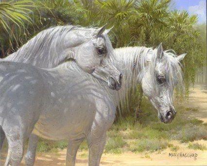 Arabian horse painting by Mary Haggard