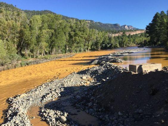 Lead, arsenic found in contaminated Animas River