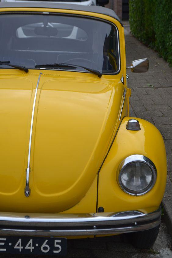 io#amarillo#westkapelle,netherlands