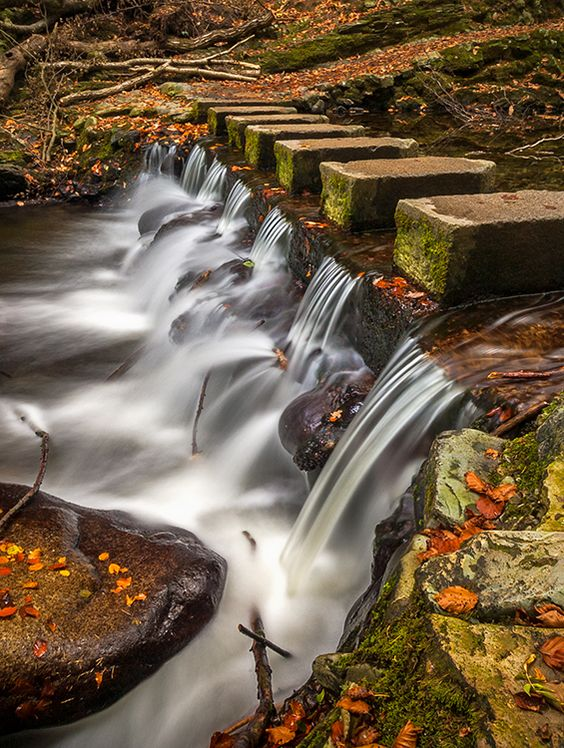 One Of The Very Few Stepping Stones Left That Span The Shimna River That Flows Through Tollymore Forest C Visual Imag Landscape Photography Forest Park Imagery
