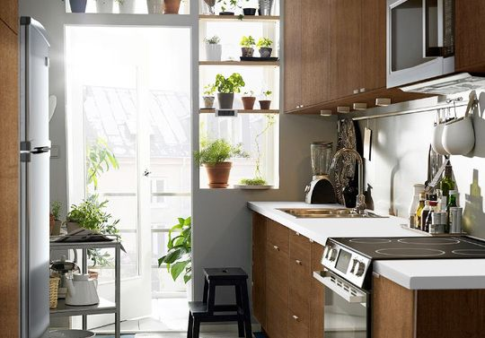 I love the shelves with plants, and the light coming through.