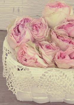 Shabby Roses..