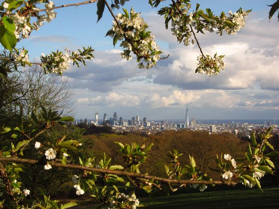 London from Hampstead Heath by Laura Nolte, via Flickr