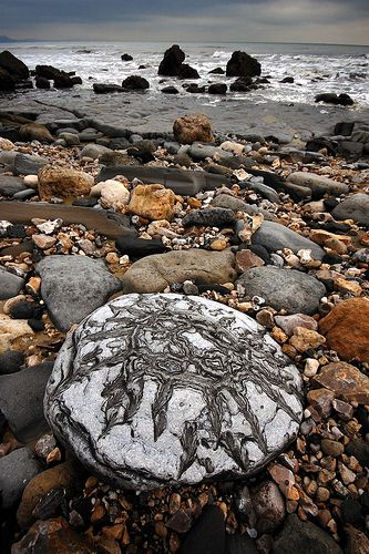 Monmouth Beach, Lyme Regis, UK. Must visit there to look for fossils!: