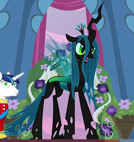 "Queen Chrysalis - love Shining Armor's face, he's all, ""who is this lady why is she here what the hay is going on?"""