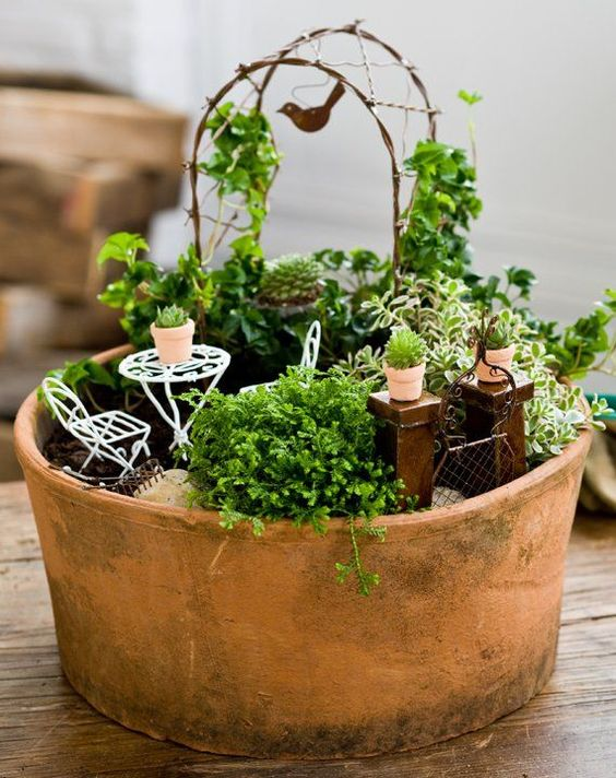 Jardin miniature le mondes des bisounours pinterest for Accessoires de jardin