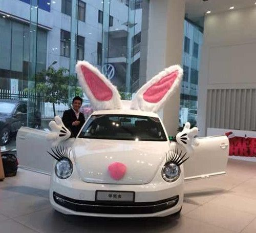Doing this to my car this week except with purple love3 beetle wedding car decorations junglespirit Gallery