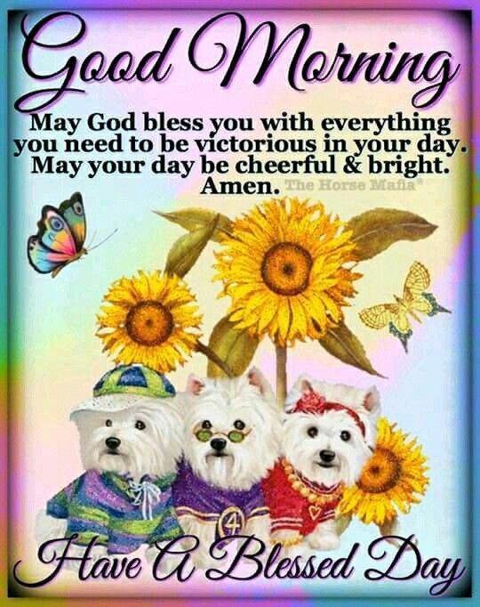 Good Morning J Good Morning Friends Quotes Christian Good Morning Quotes Good Morning Picture