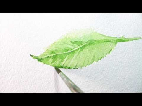 How To Paint Around Veins Of A Leaf In Watercolor 수채화 水彩画