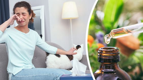 Suffering from pet allergies? You'll be pleased to know that you can intervene with these seven natural remedies. Say hello to relief.