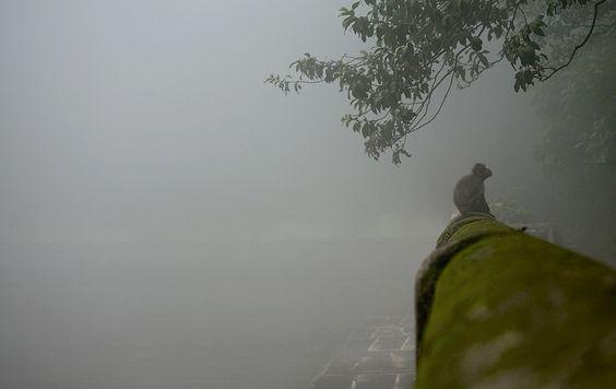 Very foggy