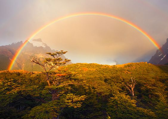 10 fotos reais de arco-iris | Gorila Polar