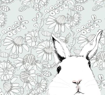 kid: Adorable Bunny, Animal Drawings, White Bunnies, Bunny Art, White Rabbits, Rabbit Illustrations