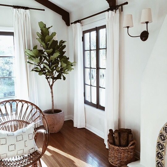 UGH I FUCKING LOVE AIRY LIGHT INTERIORS WITH RUSTIC ACCENTS!!!!!!! I LOVE THOSE TRENDY-ASS BROADLEAF HOUSEPLANTS!!!!! THIS SHIT RIGHT HERE