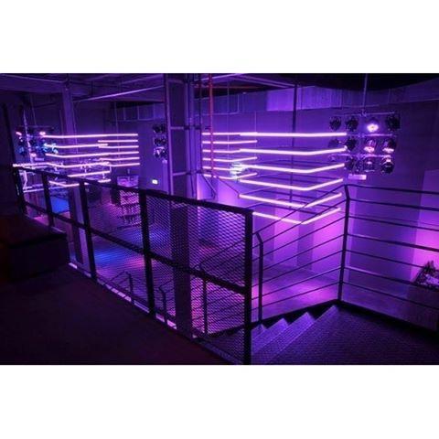 Imagen de neon lights and purple
