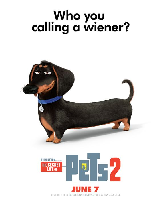 Hannibal Buress Is Buddy The Pets Return This Summer In The New Movie The Secret Life Of Pets 2 Coming To Theaters June Secret Life Of Pets Pets Secret Life