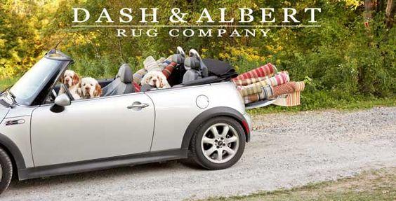 style court: Dash & Albert