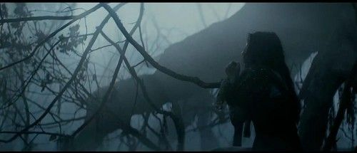 snow white and the huntsman - snow-white-and-the-huntsman Photo
