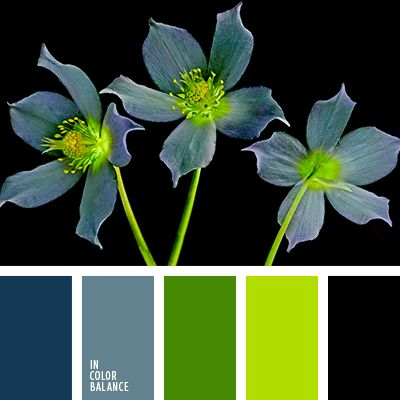Strict and at the same time the original palette consisting of muted shades of blue, spring colors green and black. Rich green balances the other colors, creating a balance, so that the combination of looks fresh and neizbity. This color scheme will transform the office manager, also an excellent solution for business style.