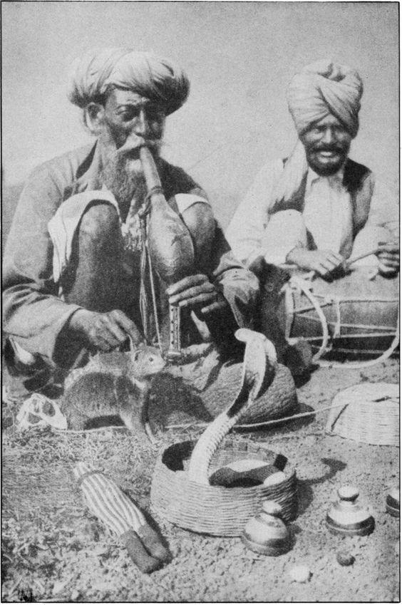 india, snake charmer