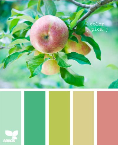 Mint green and Salmon