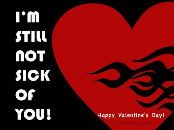 Still not sick of you  love funny cute quote not valentine's day valentines sick of you